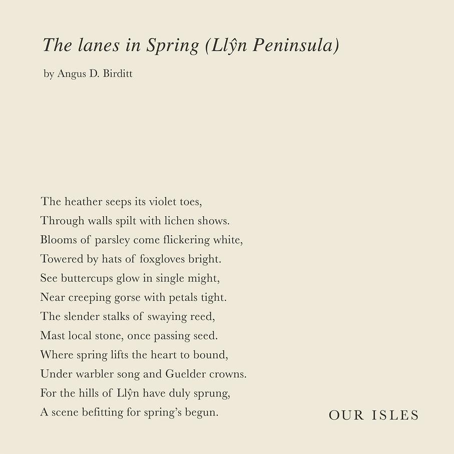 The Lanes in spring (Llyn).jpg