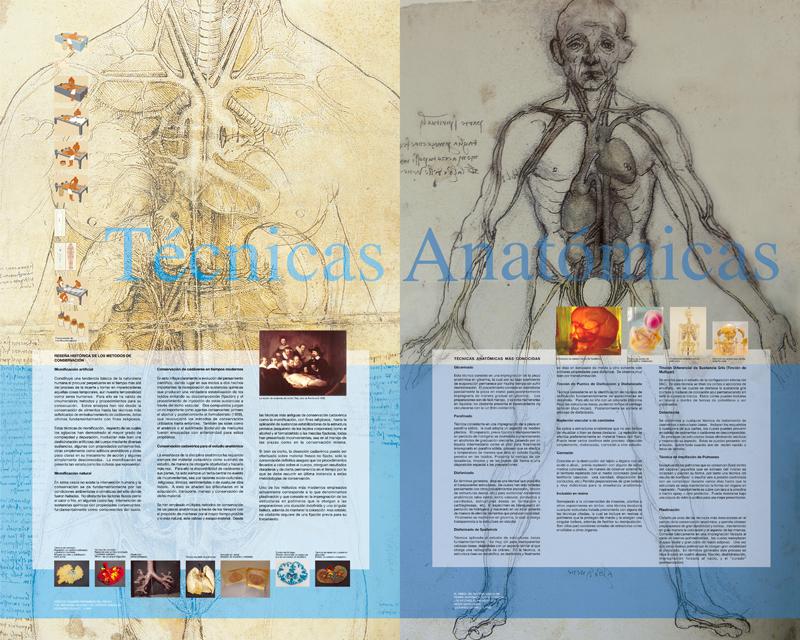 Museo de Anatomía
