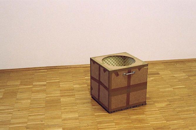 Schreikiste, 43 x43 x 43 cm, 2005