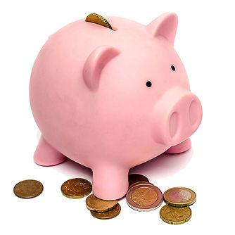 BLOG 1.2 - Quali sono i costi fissi di u