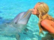 dolphin9.jpeg