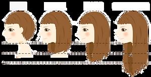 hairsizes.png
