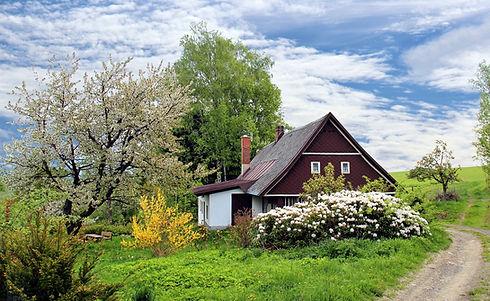 spring-2955582_1920.jpg