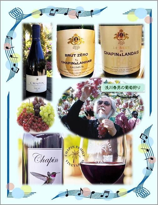 ワインの資料-2.jpg