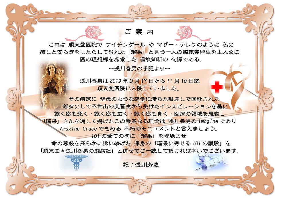 ♪瑠果に寄せる101の讃歌*ご案内.jpg