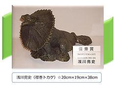 亮史作品(襟巻トカゲ)68-1.jpg