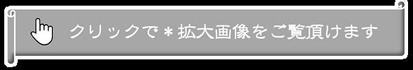 拡大画像-④.png