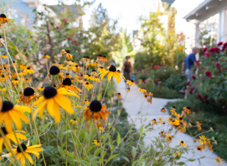 Why I love CoHousing