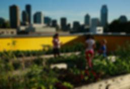Capitol Hill Urban Cohousing Rooftop Gar