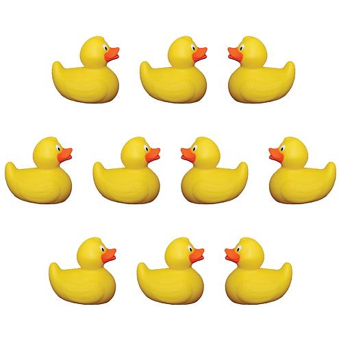 10 Duck Adoption