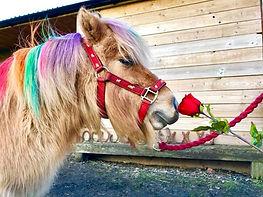 Valentine Stanely.jpg