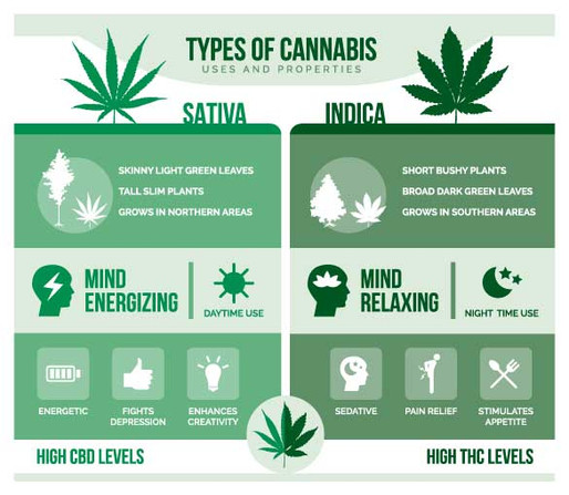 What is Indica?