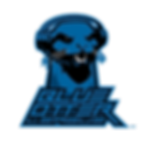 BOL-Logo_BOL.png