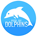 pod of dolphins.png