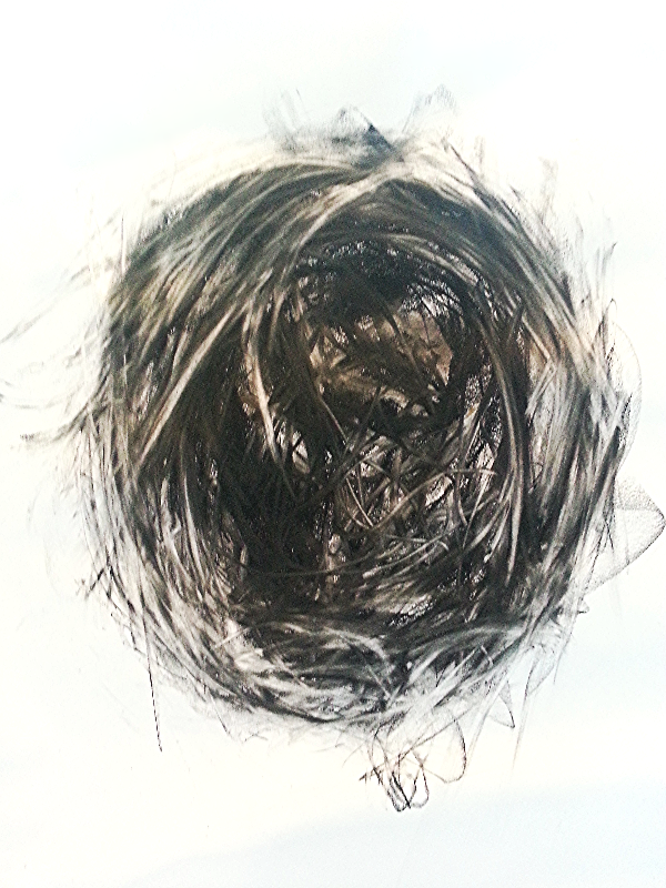2013 Charcoal on paper 78cm x 60cm
