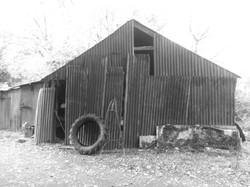 Wiclow shed 2012