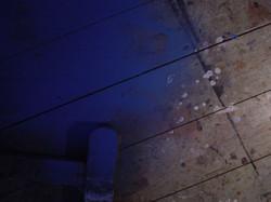 work floor 2012
