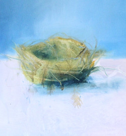 Nest Oil on Canvas 40cm x 50 cm