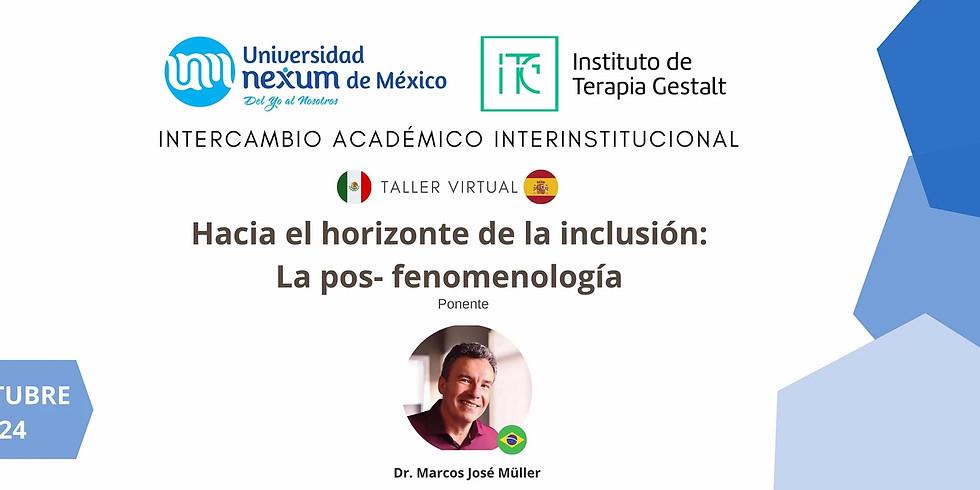 Hacia el horizonte de la inclusión: La pos-fenomenología - Taller Virtual