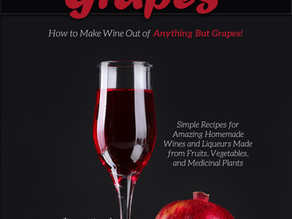 Beyond Grapes Will Teach You How to Make Wine Out of Anything But Grapes