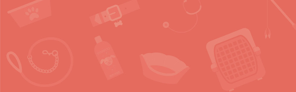 Website-Element-5.jpg