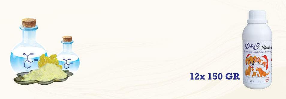 7.-Website-Project-Halaman-Detail-Produk