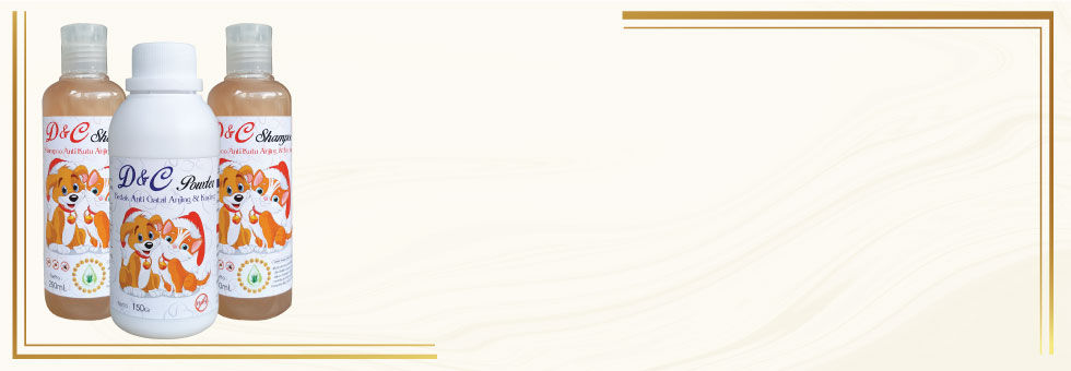 6. Website-Project-Halaman-Detail-Produk