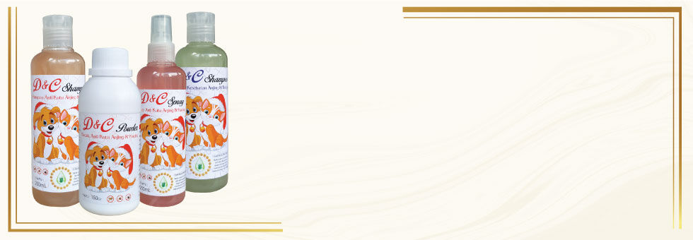 2. Website-Project-Halaman-Detail-Produk