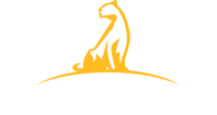 academy-of-wealth-footer-logo.png