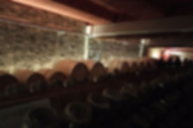 cantina abissi.jpg