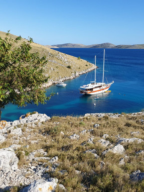 Gulet Vito, the Dolphin Catcher - available for charter in Croatia