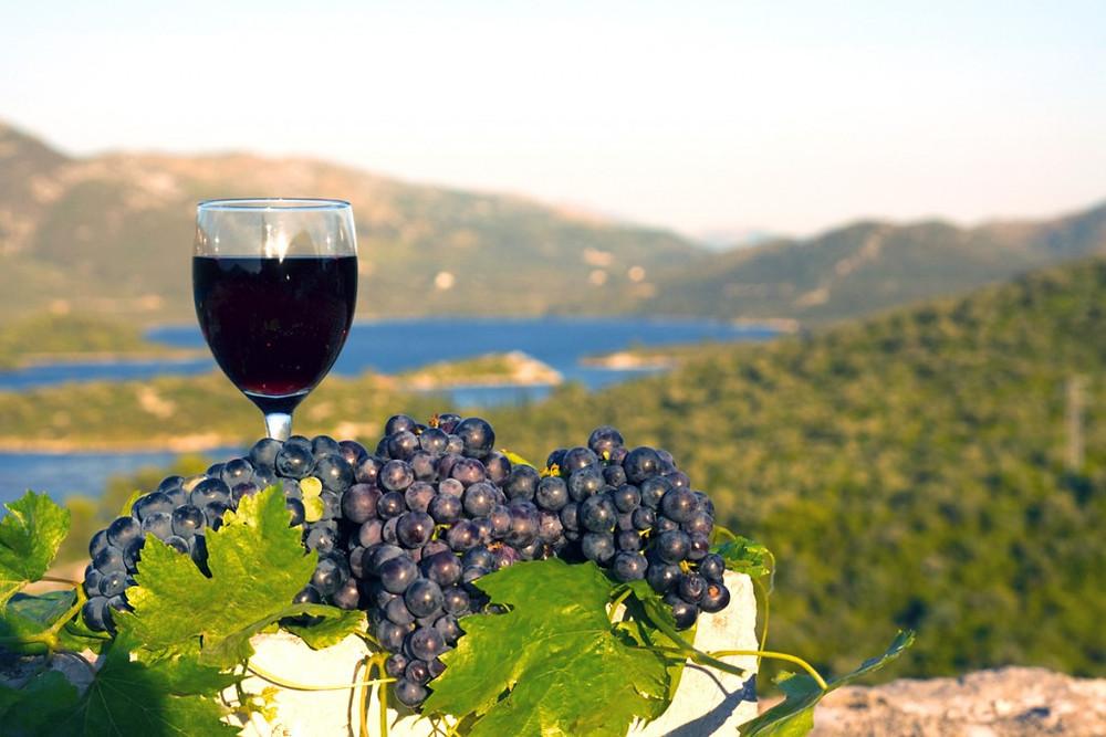 Wine Tasting, Korčula Croatia