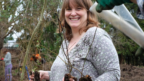 New Volunteering opportunities at the farm