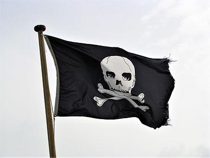 pirate-flag-3143853_1920.jpg