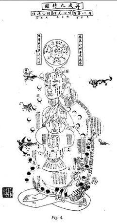 gravure ancienne décrivant le fonctionnement des organes internes