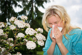 femme souffrant d'allergie au pollen.