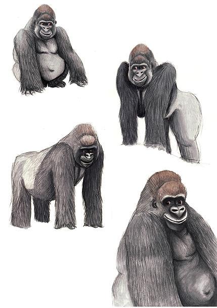 Gorilla character sheet