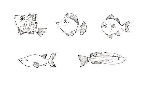 fish line drawn.jpg