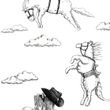 Rodeo cloud horse