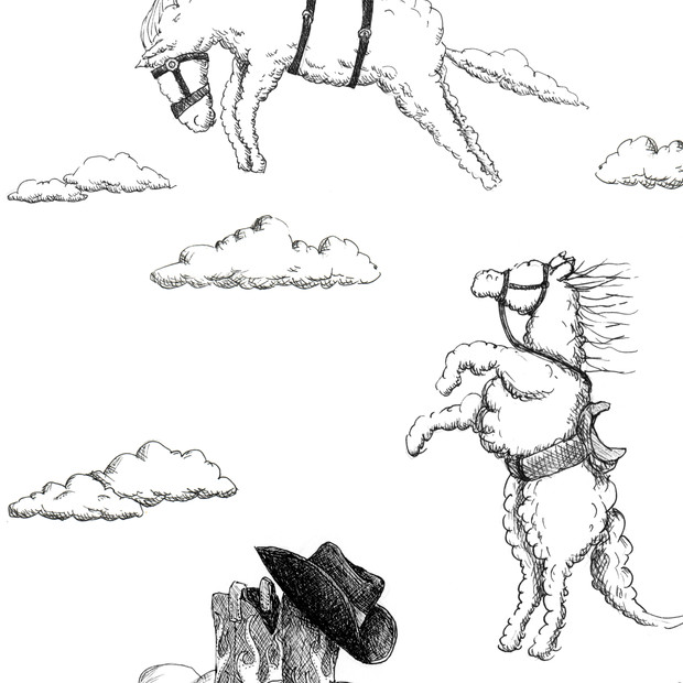 Rodeo cloud horse