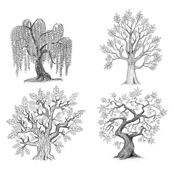 Tree Set.jpg