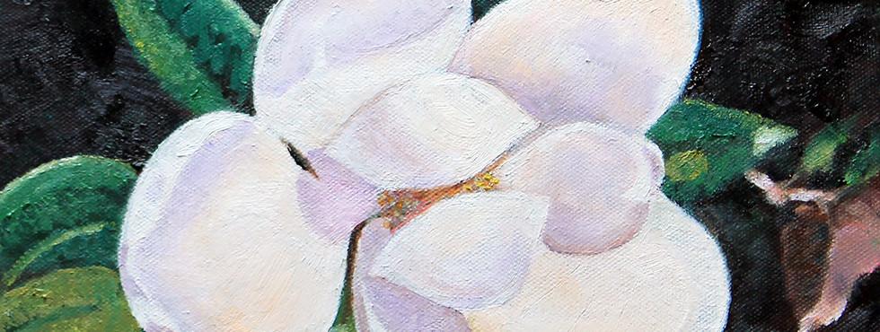 JJ's Magnolia