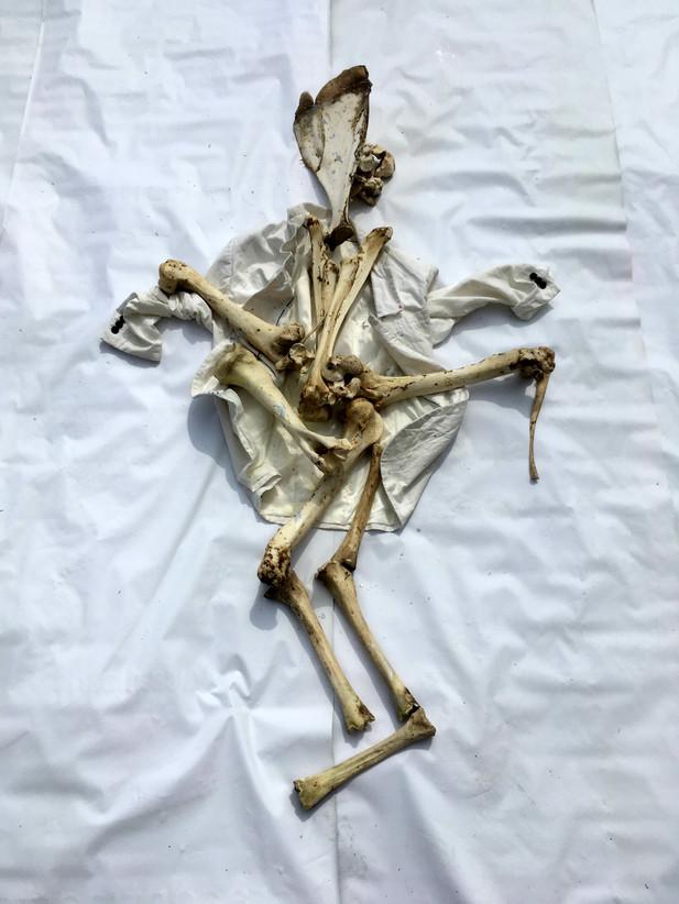 2 Enquiry Of Bones / Enquête Sur Les Os