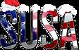 susa logo christmas.png