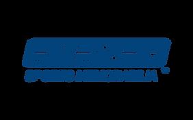 steiner logo.png