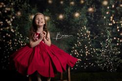 TN Christmas Photographer | Baine Images