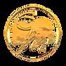 CYM gold +.png