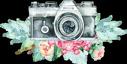 FlowersCameras_05.png