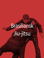 Brasiliansk Jiu Jitsu