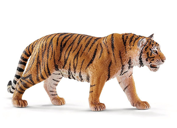 Figurine Tigre du Bengale Mâle - SCHLEICH